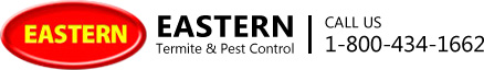 Eastern Pest & Termite & Mold Control